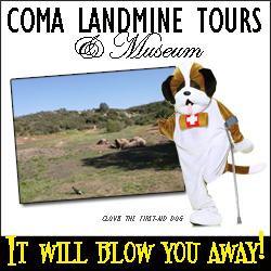 Landmine Ad 250 x 250