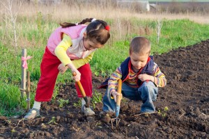Children love dirt. Why not teach them to raise vegetables I can sell for just $500 a week this summer?