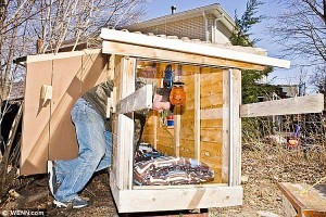 Funny-Micro-House-Design-Ideas