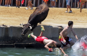 SPAIN-ANIMAL-BULL
