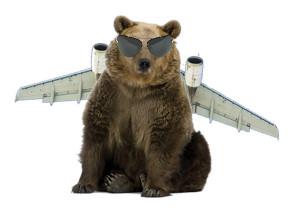 032015 bear plane 1