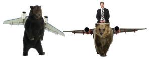 032015 bear plane 2