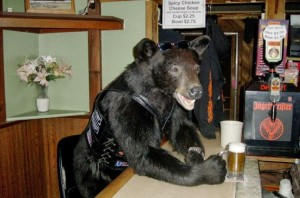 bear'sbiker
