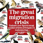 Opinion: I Wish More Politicians Talked About the Migratory Patterns of Birds