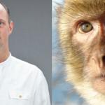 Mayor Downplays Second Altercation Involving Primate