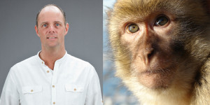 mayor and macaque